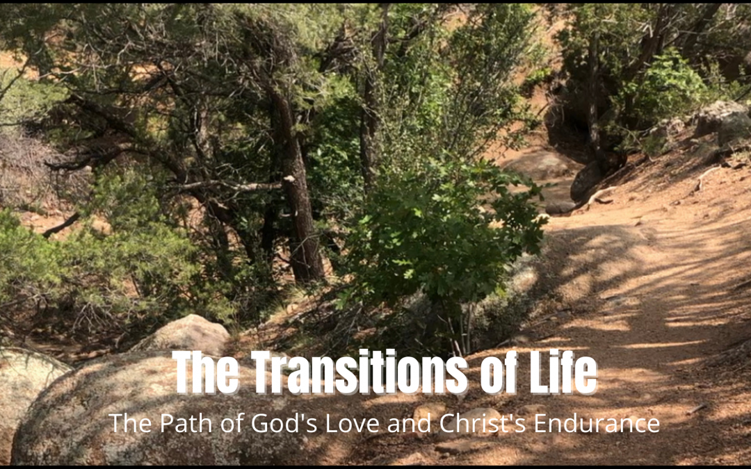 The Transitions of Life